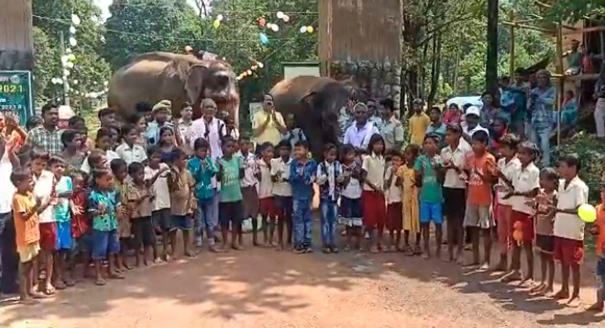 हथिनी गजनी के जन्मदिन पर बच्चों ने भी खूब की मस्ती.