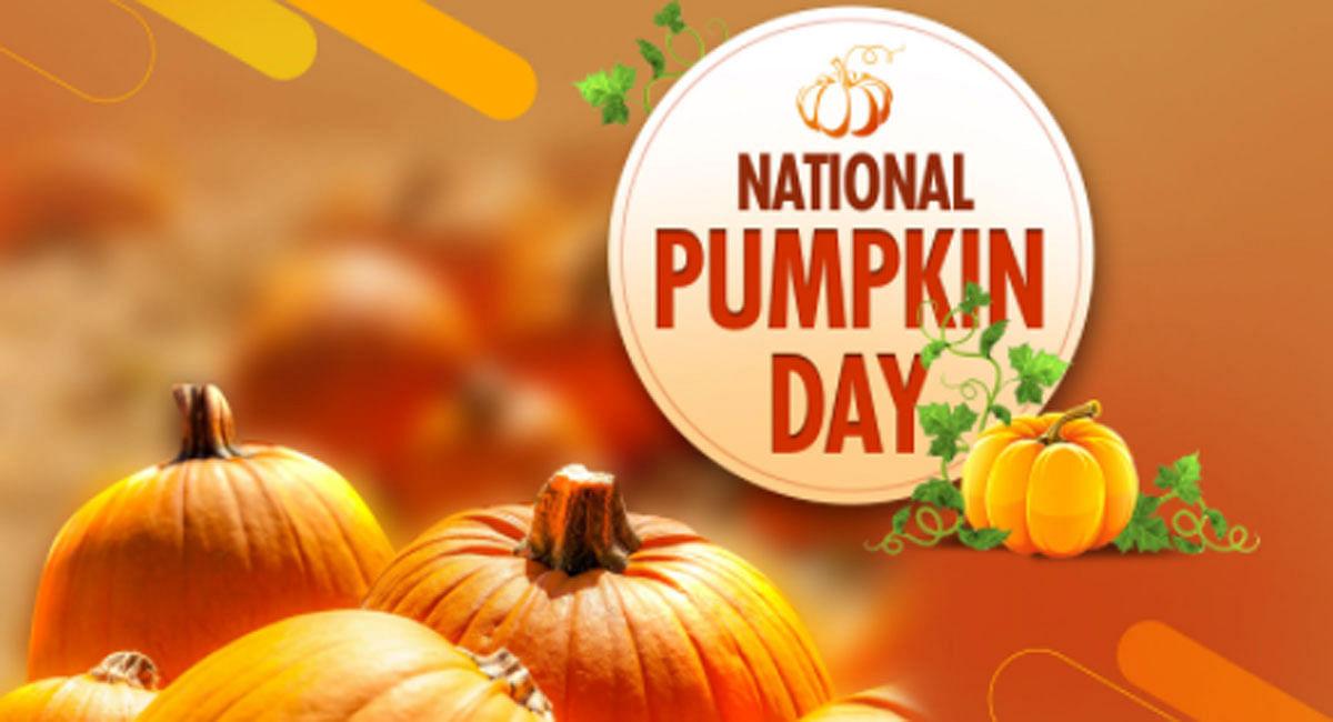 National Pumpkin Day: बैली फैट लॉस से लेकर लिवर और किडनी के लिए फायदेमंद है कद्दू
