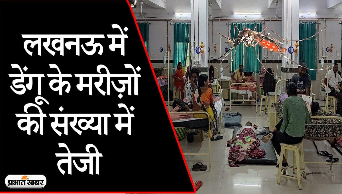 UP News: लखनऊ के सिविल अस्पताल में बढ़े डेंगू के मरीज, गंदगी के अंबार में चल रहा इलाज, ग्राउंड रिपोर्ट