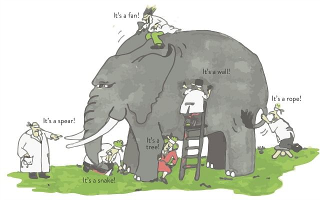 Blind men and the elephant.