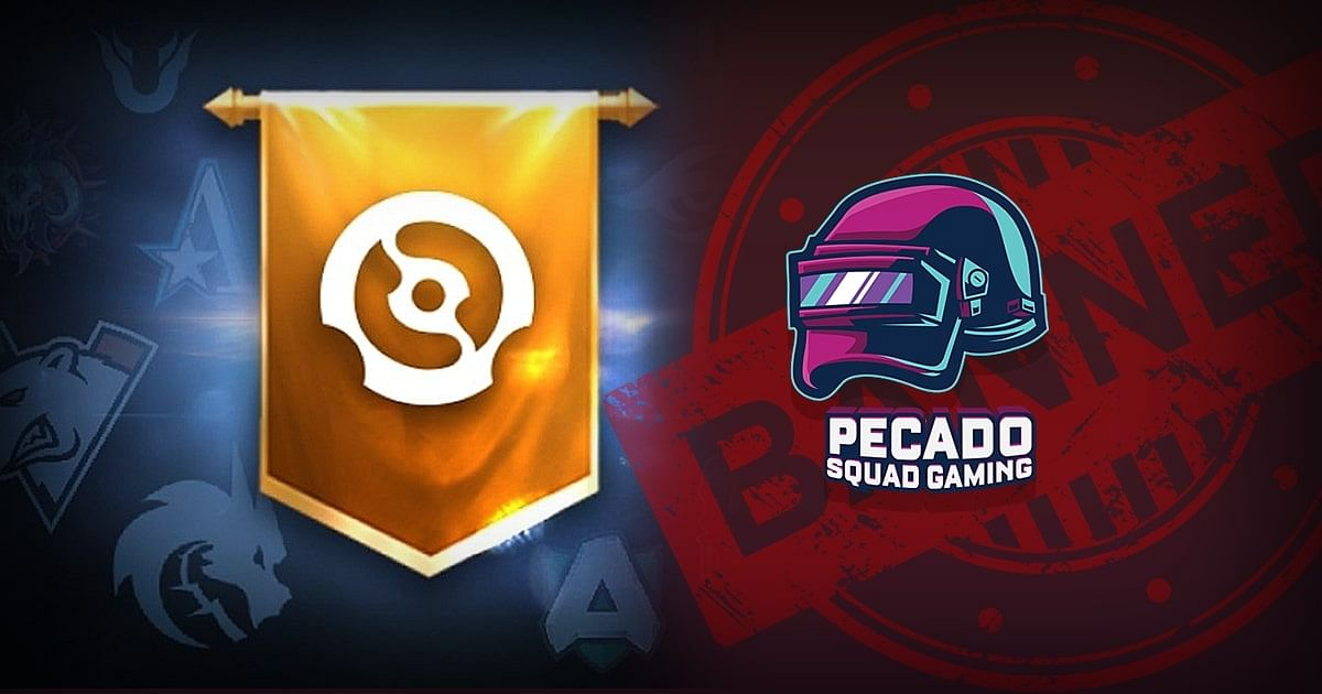 """<div class=""""paragraphs""""><p>Pecado Squad Gaming's bundle gets removed minutes after addition.</p></div>"""