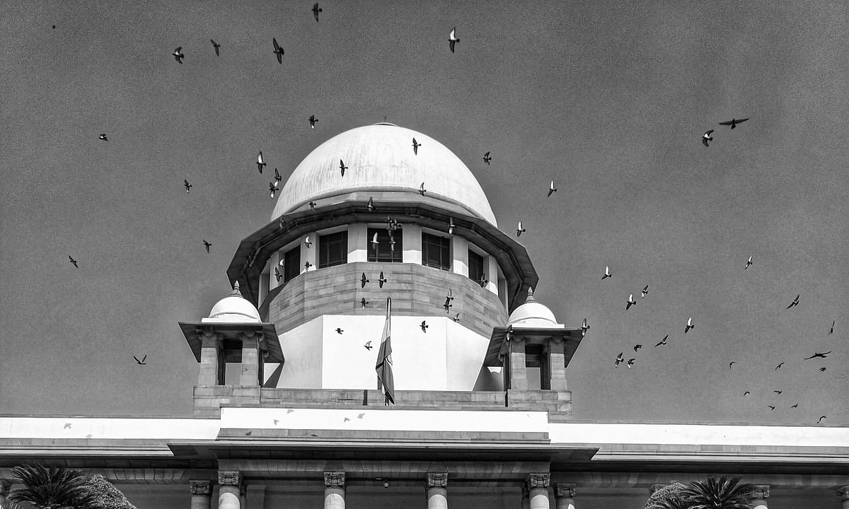 Yearly Reports: The Supreme Court in 2019