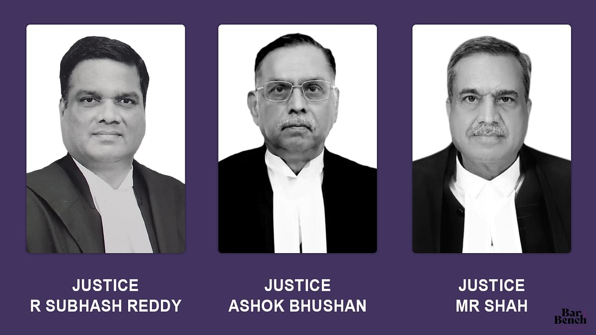 High Court while hearing appeal against conviction as first appellate court should re-appreciate entire evidence in detail: Supreme Court