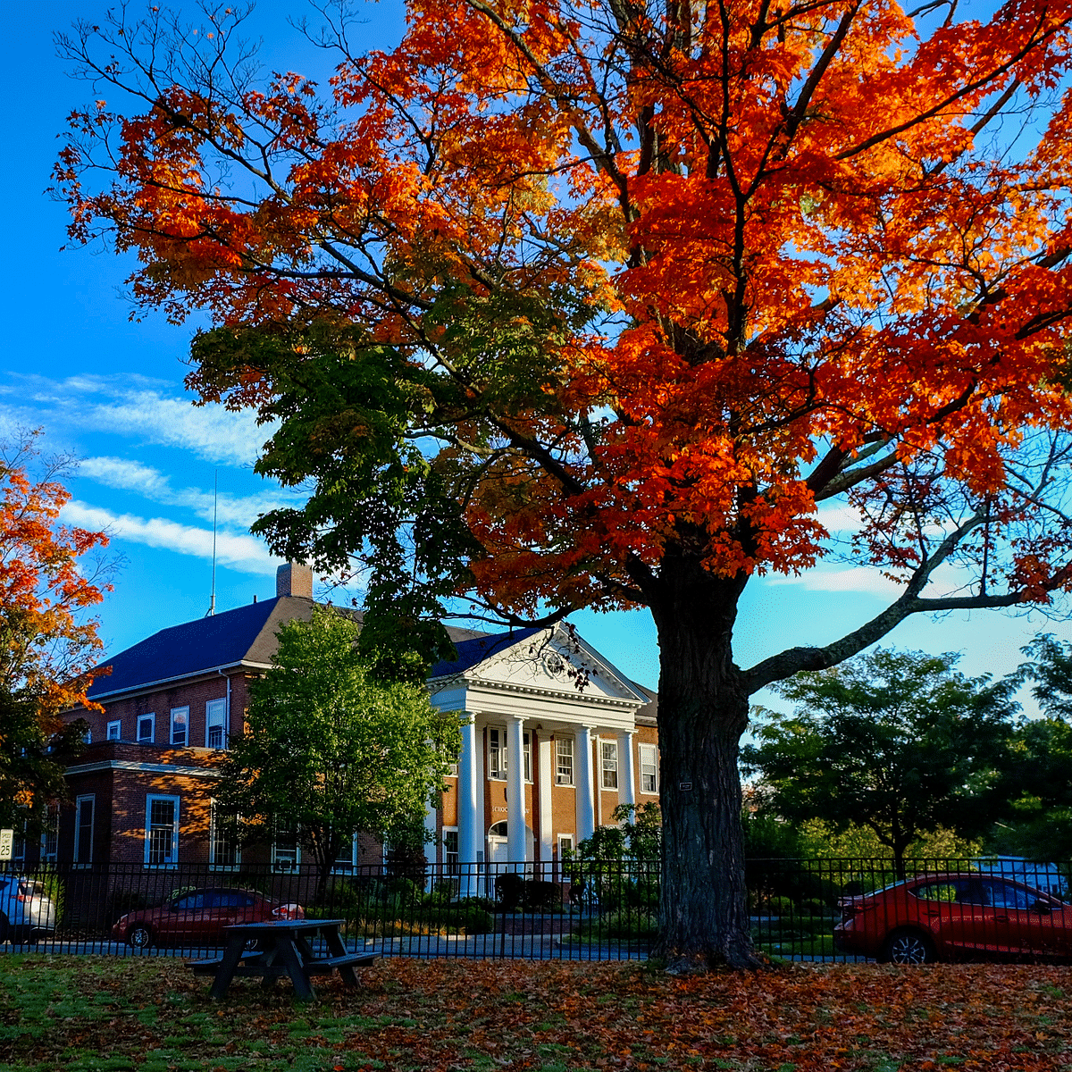 The UNH campus in Fall