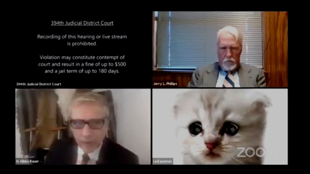 """[Humour] """"I am not a cat"""" Texas lawyer accidentally appears in virtual court hearing with cat filter on"""