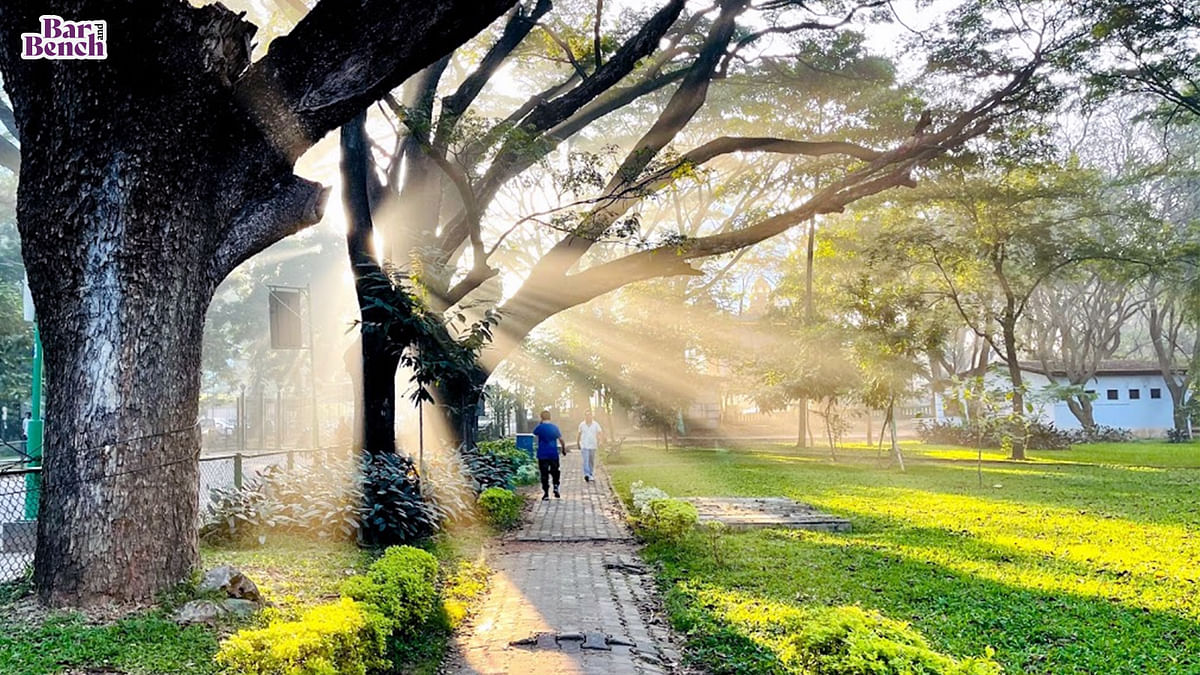 Movement of vehicles in Bengaluru's Cubbon Park to continue: State govt to Karnataka High Court