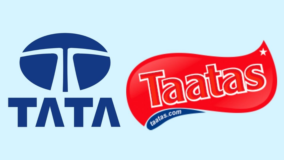 The Viewpoint: The TATA domain name dispute: Is the game of fame enough?