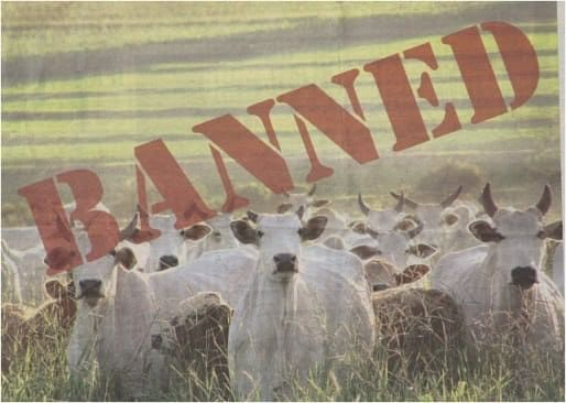 #Banistan? Why the J&K High Court is not to blame for the beef ban
