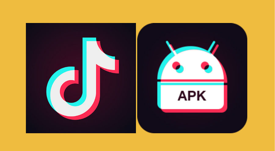 Madras HC order based on exaggerations made by petitioner: TikTok in Supreme Court