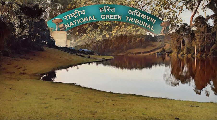 World Environment Day: How the National Green Tribunal has attempted to curb environmental degradation in the recent past