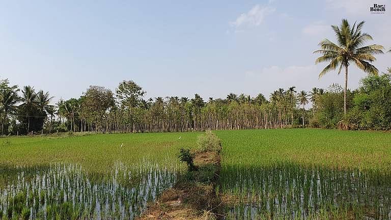 [किसान आत्महत्या] कर्नाटक उच्च न्यायालय ने राज्य सरकार से कहा: प्रधानमंत्री फसल बीमा योजना का व्यापक प्रचार-प्रसार करें