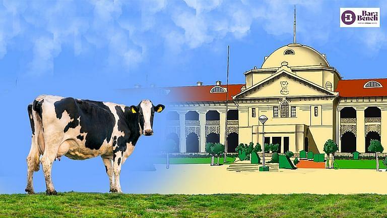 [ब्रेकिंग] गाय भारतीय  संस्कृति का हिस्सा है; उसे मौलिक अधिकार और राष्ट्रीय पशु घोषित किया जाना चाहिए: इलाहाबाद उच्च न्यायालय