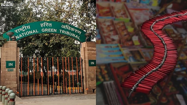 National Green Tribunal, use of firecrackers