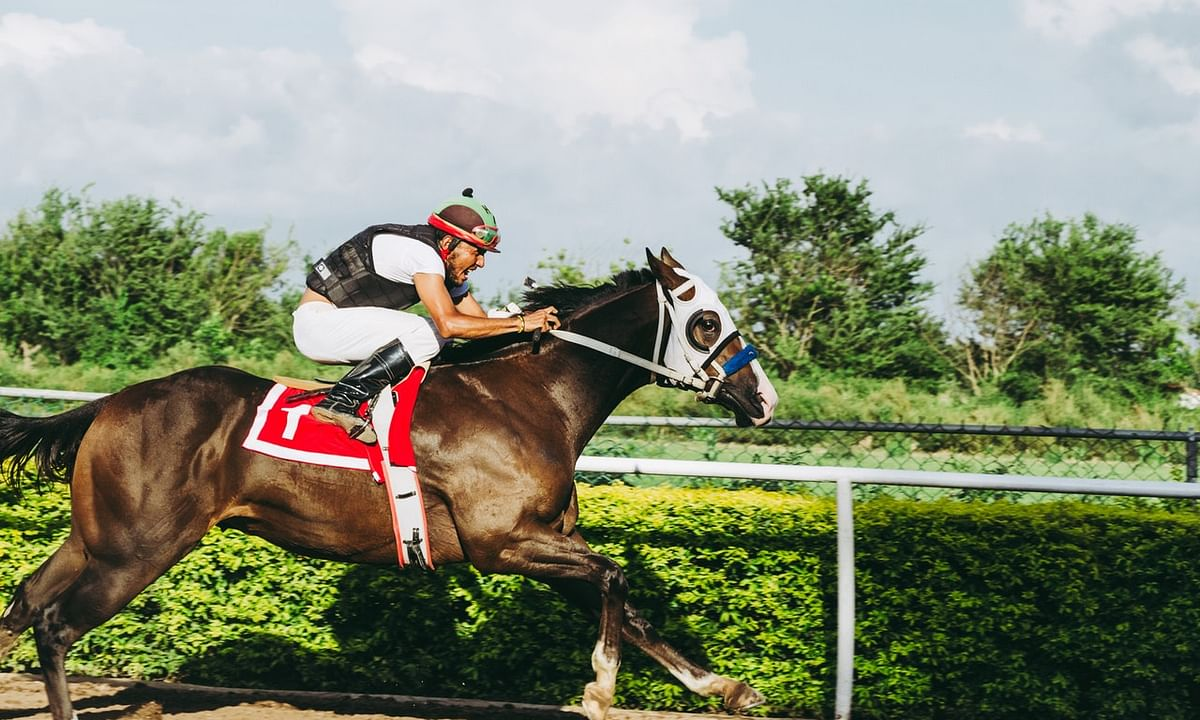 Thoroughbred Thursday: Garrity picks horses at Saratoga, Del Mar, and Colonial Downs