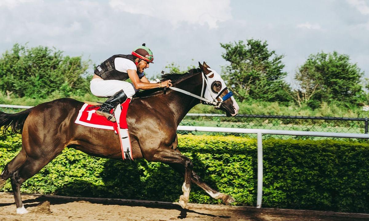 Horse Racing: Mick McMudder's Saturday Picks