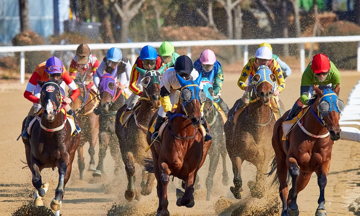 Horse Racing: McMudder's Tuesday Picks