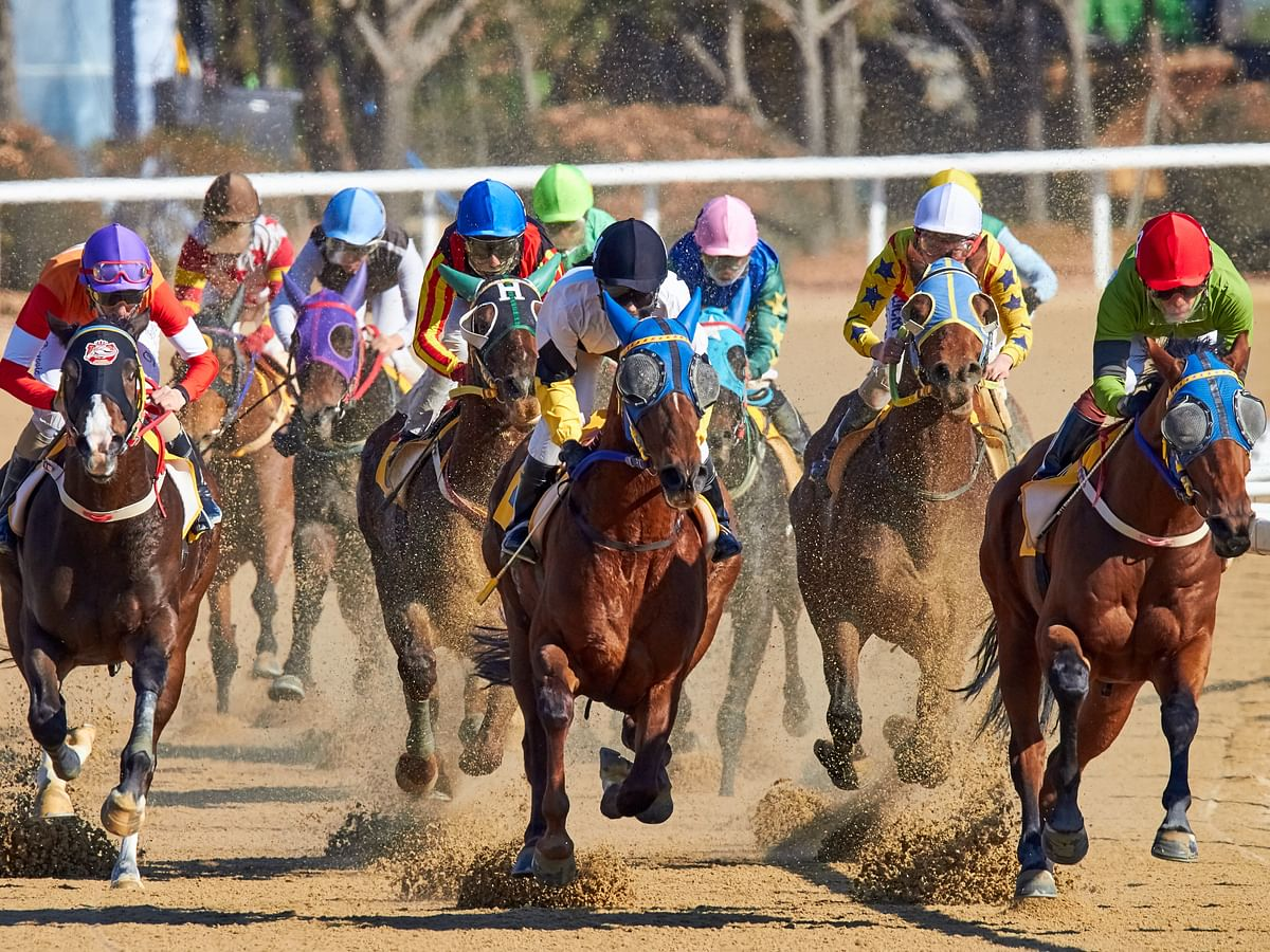 FREE New Year's Day Horse Racing Pick: RT and SmartCap look at the 6th race at Laurel Park
