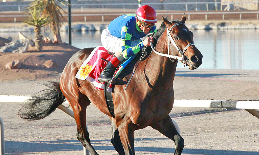 Horse Racing: Garrity returns to Sunland Park