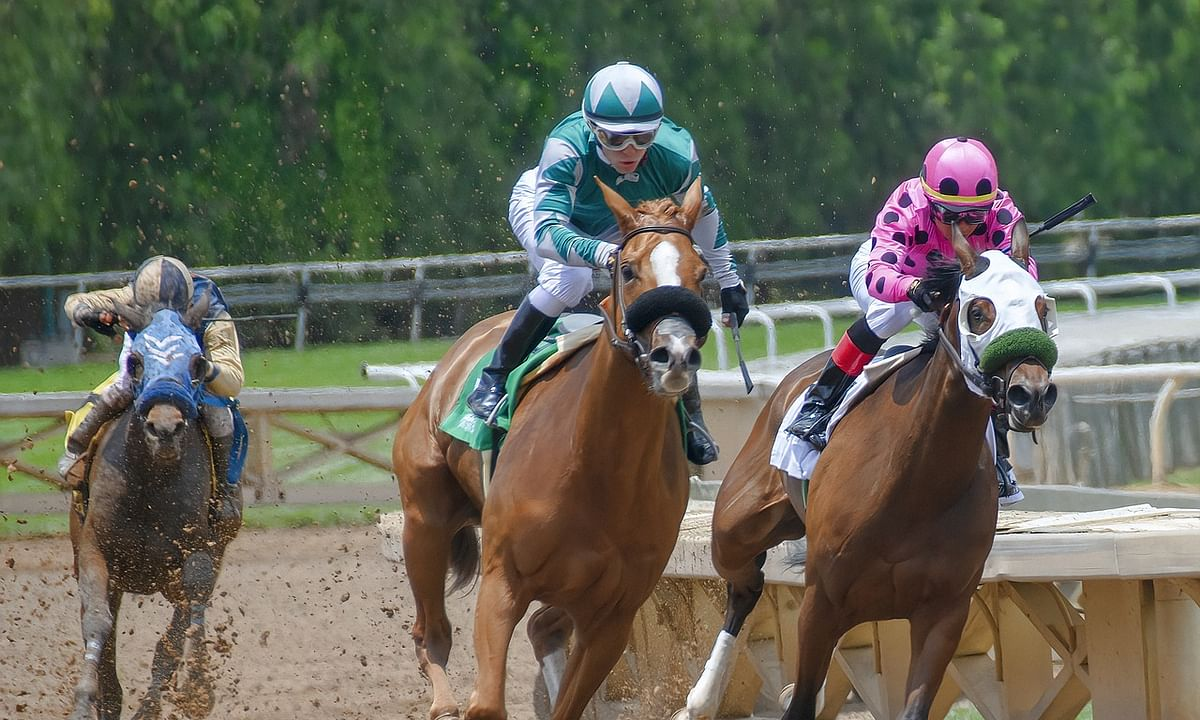 Thoroughbreds Tuesday: It's going to be a beautiful day at Parx. Let McMudder help you pick some winners