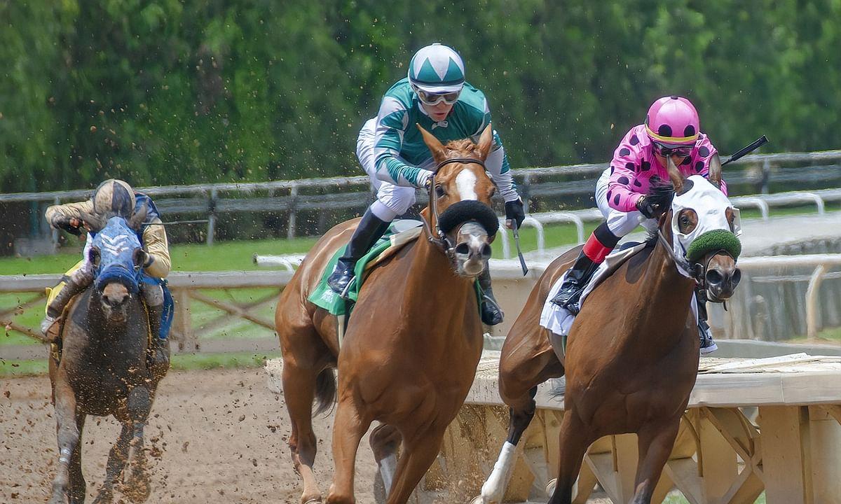 Horse Racing: Garrity picks claimers at Sunland & Turf Paradise