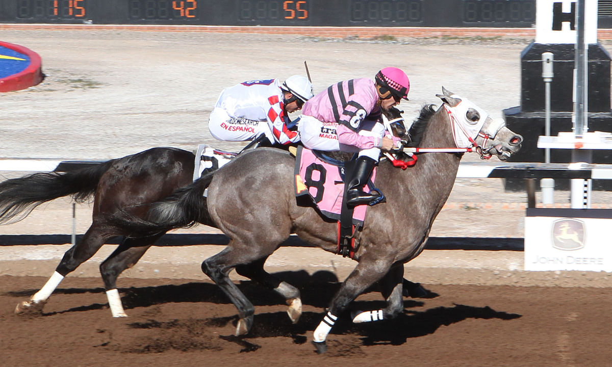Horse Racing: Tuesday Garrity tries speedy Sunland in New Mexico