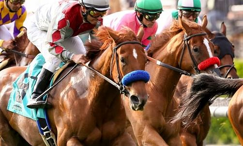 Horse Racing Wednesday: Garrity picks a big day of races at Laurel Park, Tampa Bay Downs, Gulfstream Park, Santa Anita Park, and Aqueduct
