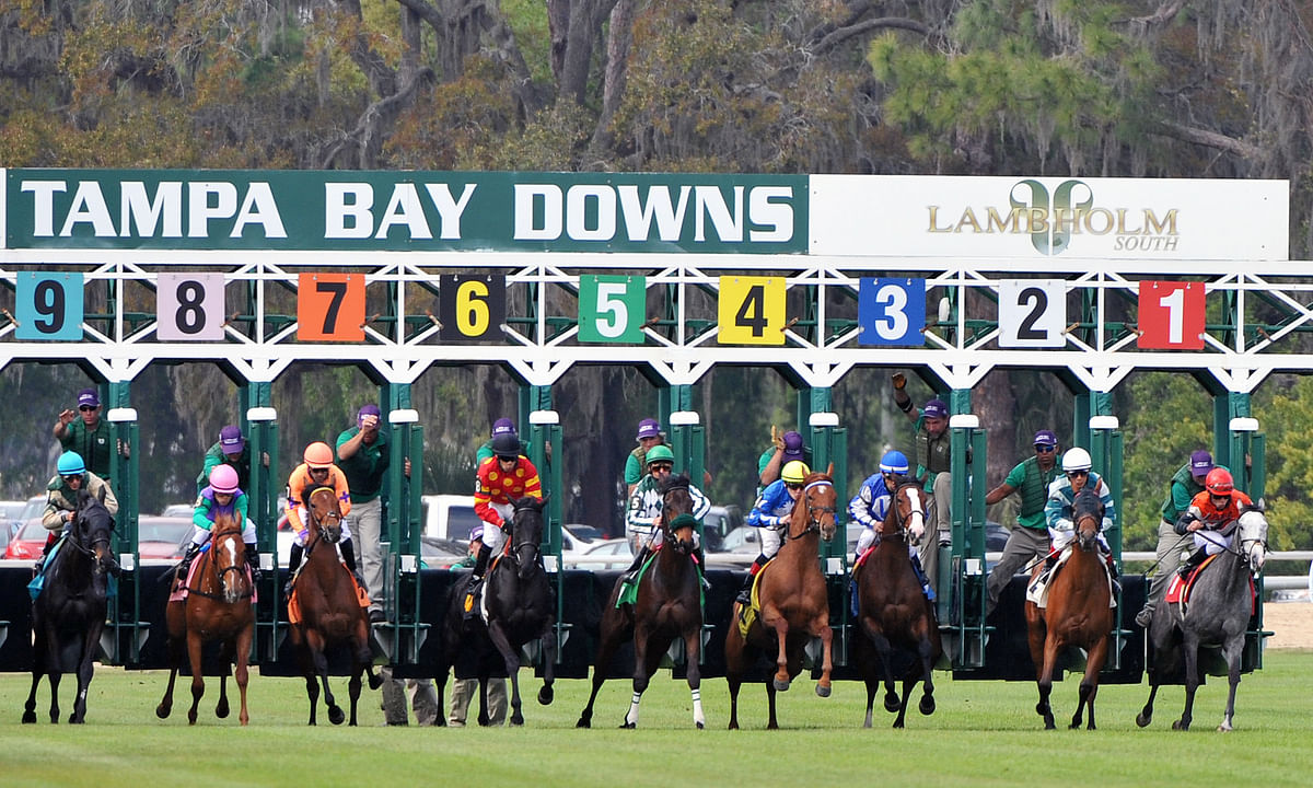 Wednesday at the track: Garrity picks races at Tampa Bay Downs, Delaware Park, Indiana Grand