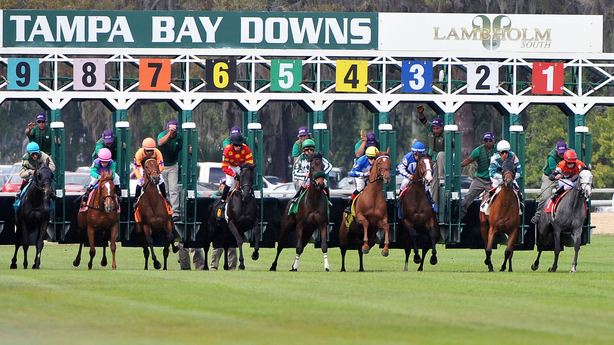 FREE SmartCap Horse Racing Pick for Wednesday: RT handicaps the 2nd race at Tampa Bay Downs