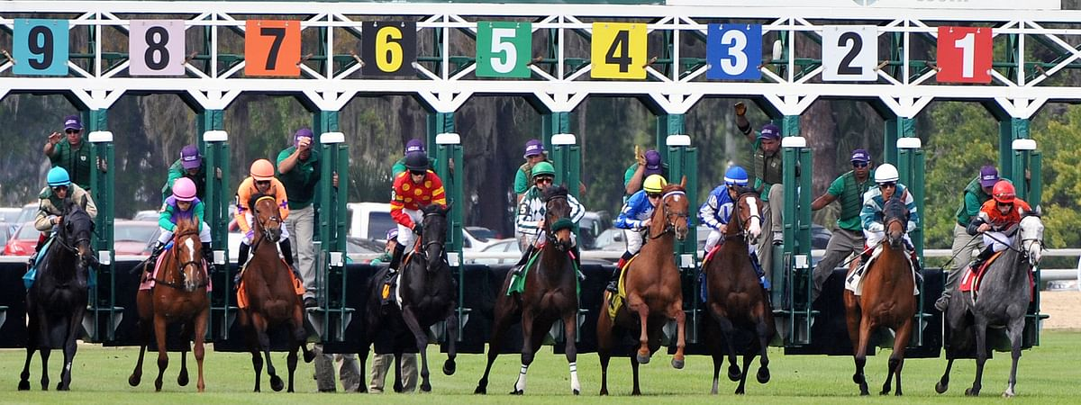 Horse Racing at Tampa Bay Downs.
