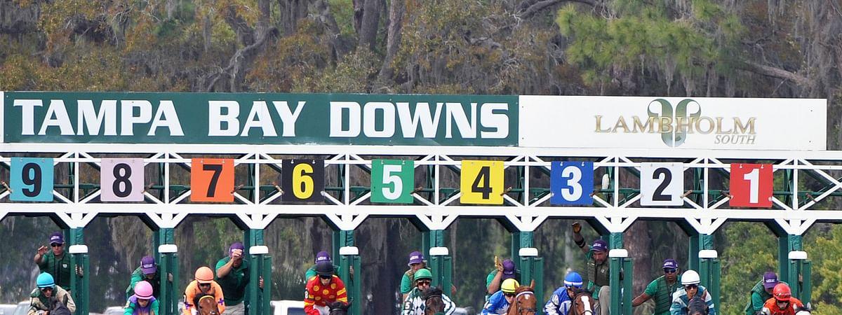 Horse Racing at Tampa Bay Downs.
