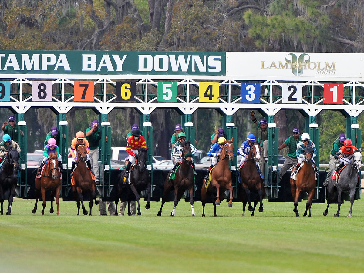 Horse Racing Wednesday: Garrity goes to Florida to pick races at Tampa Bay Downs and is back in time to pick late races at Penn National