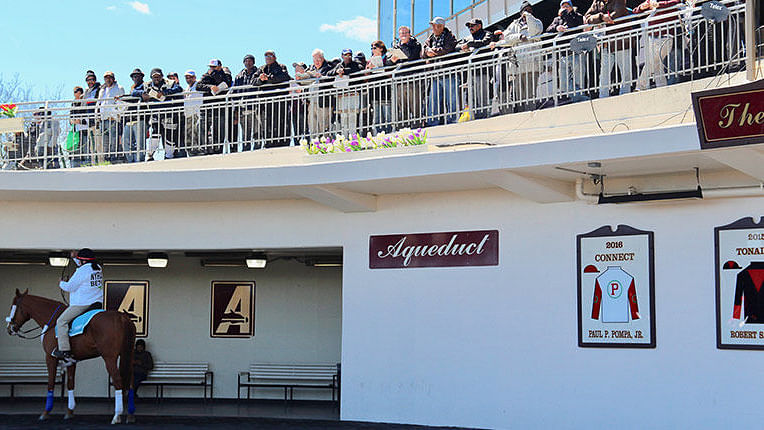 FREE Aqueduct Horse Racing Pick: RT and SmartCap analyze Thursday's 7th race