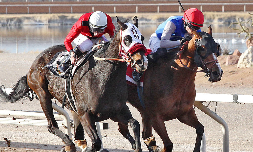 Thoroughbreds: Garrity is at Will Rogers Downs and Sunland Park and tosses in a few handicapping tips