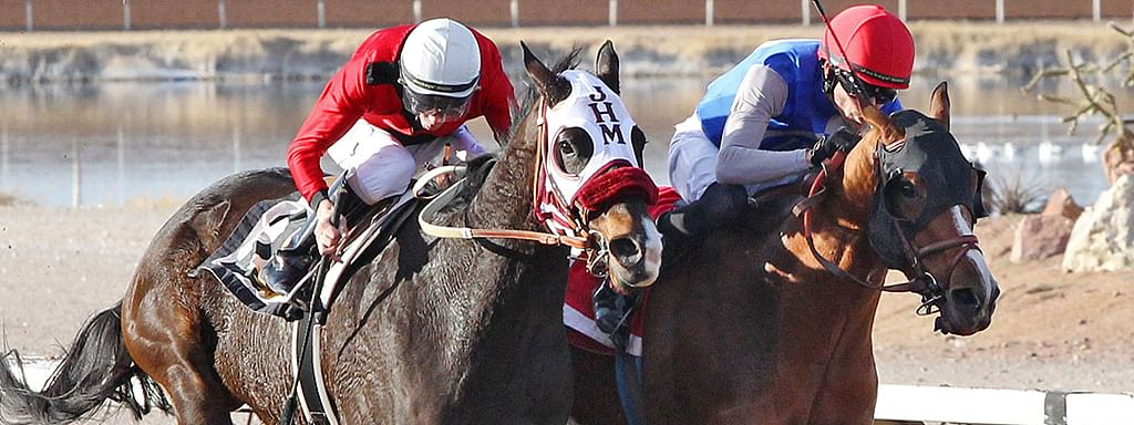 In racing at Sunland Park on Sunday, Jan. 20, 2019, , Blazing Navarone outran Hute by a head to win a furious finish in the one and one-sixteenth mile feature of older New Mexico-breds. Blazing Navarone responded bravely for jockey Ry Eikleberry to take first place honors at 6-1 odds. The winner returned $15 on a $2 win ticket.