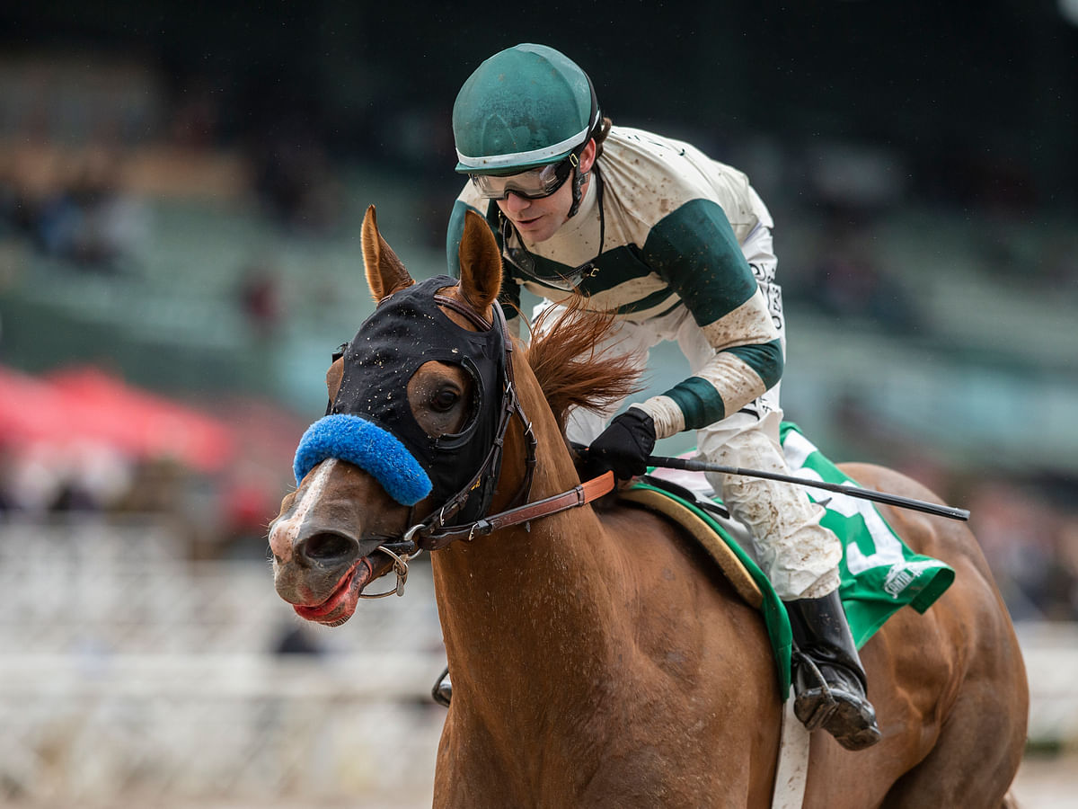 Horse Racing Sunday: Garrity picks races at Santa Anita Park, including the Grade 3 Desert Stormer Stakes, and throws in a Pick 3
