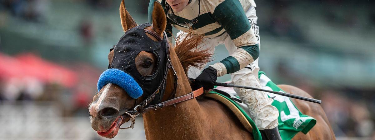 Mucho Gusto and Joseph Talamo win the Grade III, $150,000 Robert B. Lewis Stake horse race Saturday, Feb. 2, 2019, at Santa Anita in Arcadia, Calif. (Benoit Photo via AP)