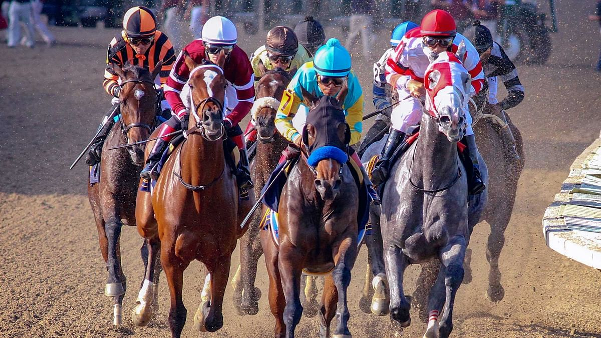 FREE Saturday Horse Racing Prediction: RT and SmartCap pick the 8th race at Parx