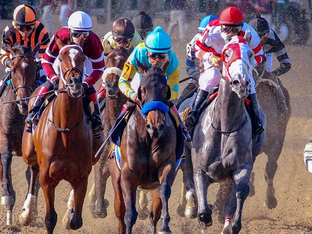 FREE Monday Horse Racing Pick: RT and SmartCap look at a big field in the 8th race at Parx