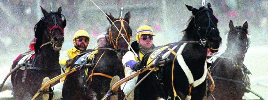 Harness racing at Harrah's Philadelphia.
