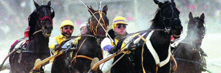 Harness Racing: Mitchell goes for some Sunday afternoon pacers at Harrah's Philadelphia