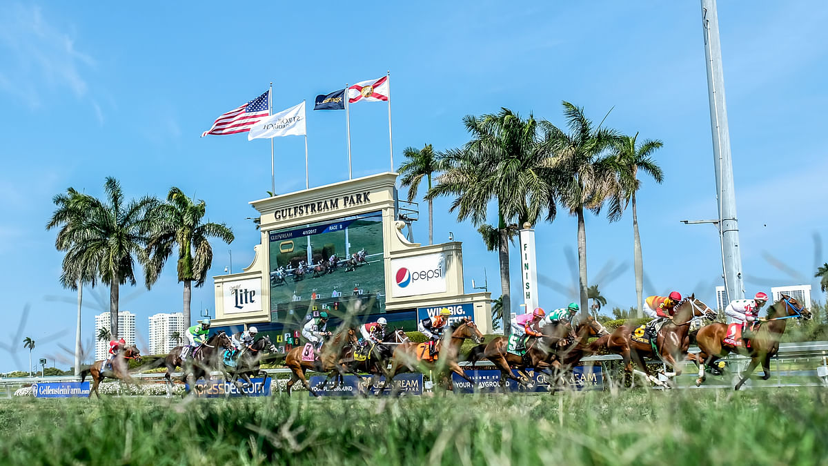 Horse Racing: RT and SmartCap pick the 6th at Gulfstream looking for two in a row in Florida