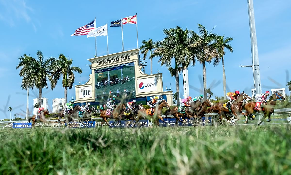 Garrity picks Wednesday Horse Racing at Gulfstream Park and Tampa Bay Downs