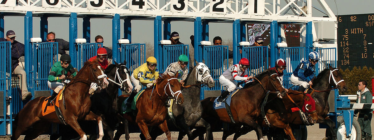 And they're off at Aqueduct Racetrack.