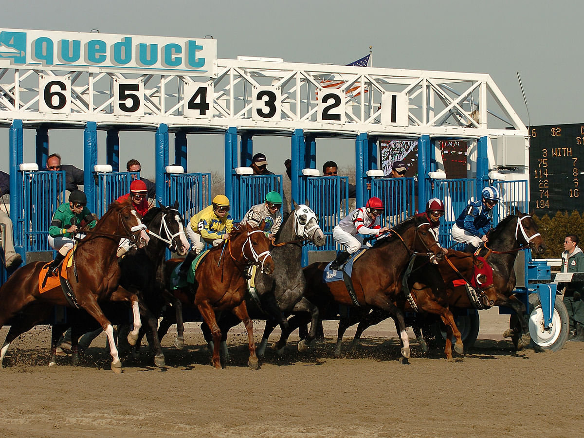 FREE Thursday Horse Racing Pick: RT and SmartCap look at the 7th race at frosty Aqueduct