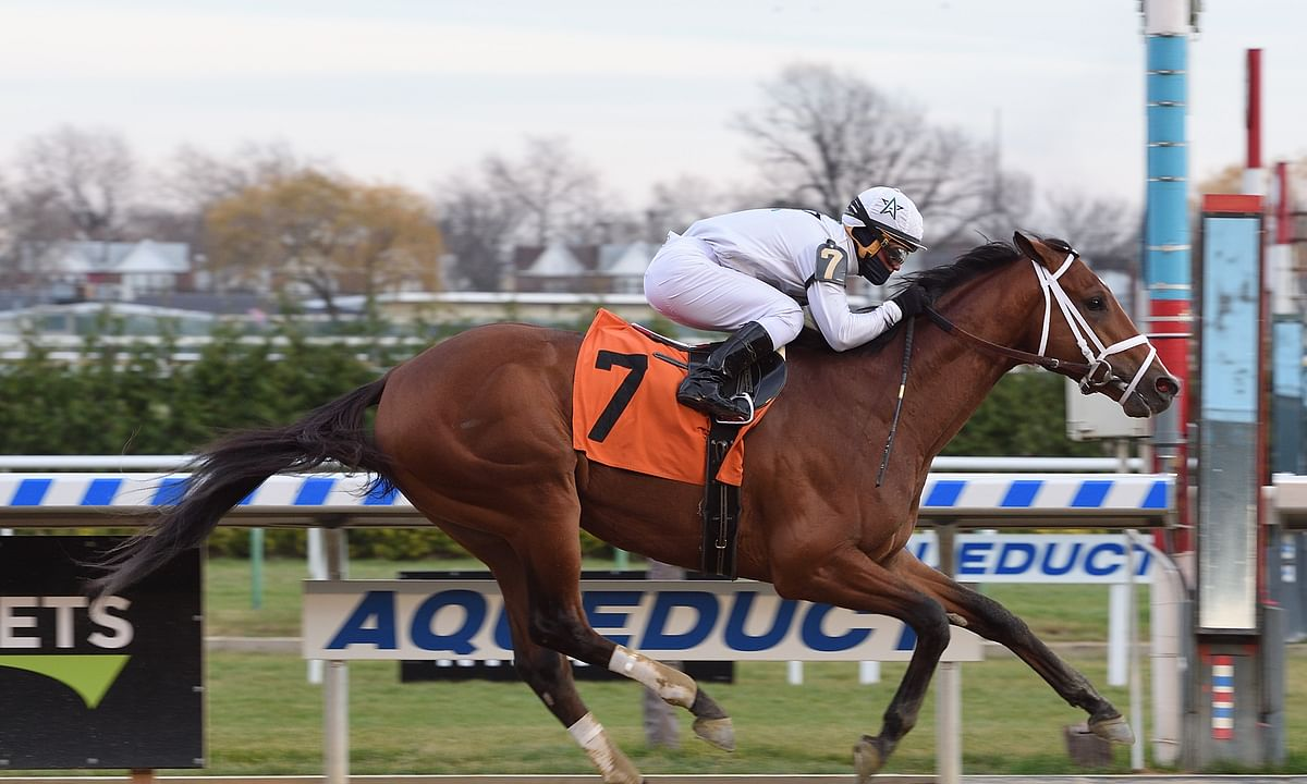 Thoroughbred Friday: Garrity picks the horses at Aqueduct including the $100,000 Central Park Stakes