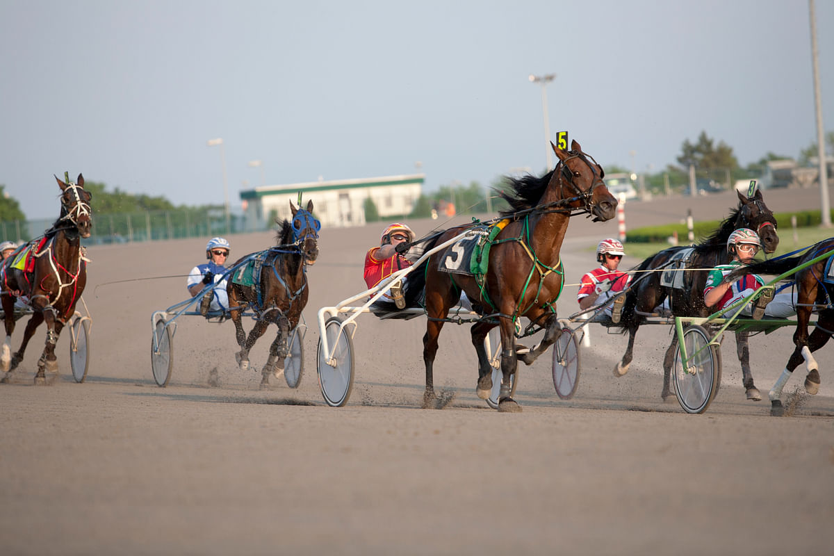 Harness Racing: Mitchell's choices for Thursday night at Yonkers