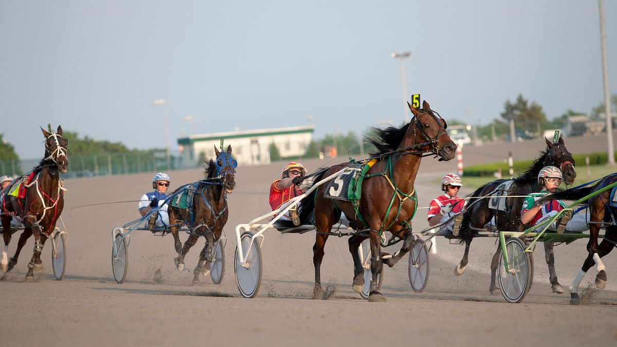 Harness Racing: Mitchell handicaps Monday night at Yonkers Raceway