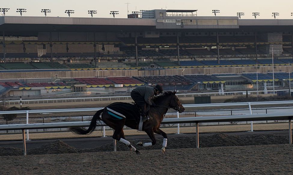 Thoroughbreds: For a change of scenery and currency, RT handicaps the Easter Sunday races at Woodbine in Toronto