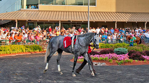 Thoroughbreds Friday: RT uses his down time for a checkup on tonight's early races at Penn National