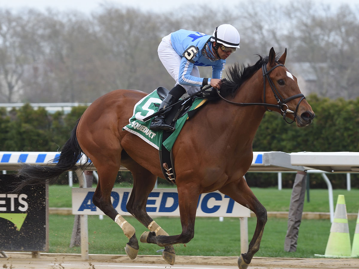 Thoroughbred Thursday: Garrity goes back to Aqueduct and picks the horses